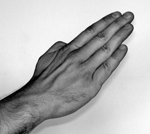 Close up image of the hand forming a knife hand position