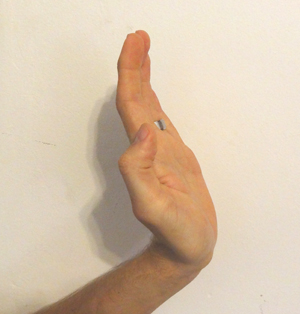 Palm strike - close up of hand position