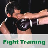 Fight Training